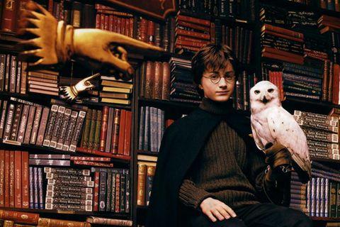 Harry Potter mit seiner Eule Hedwig