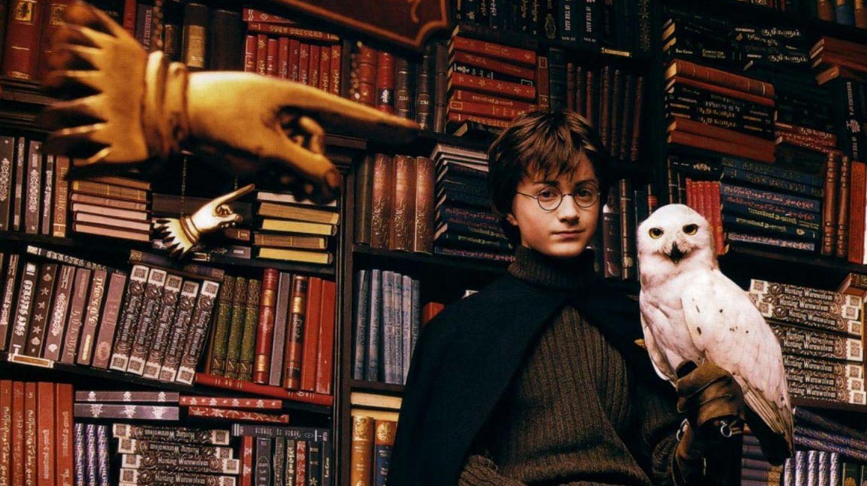 Test Welcher Harry Potter Charakter Bist Du Geolino