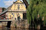 Wasserwanderung auf der Ilmenau bei Lüneburg