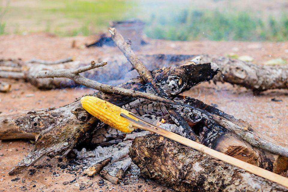 Maiskolben über dem Lagerfeuer