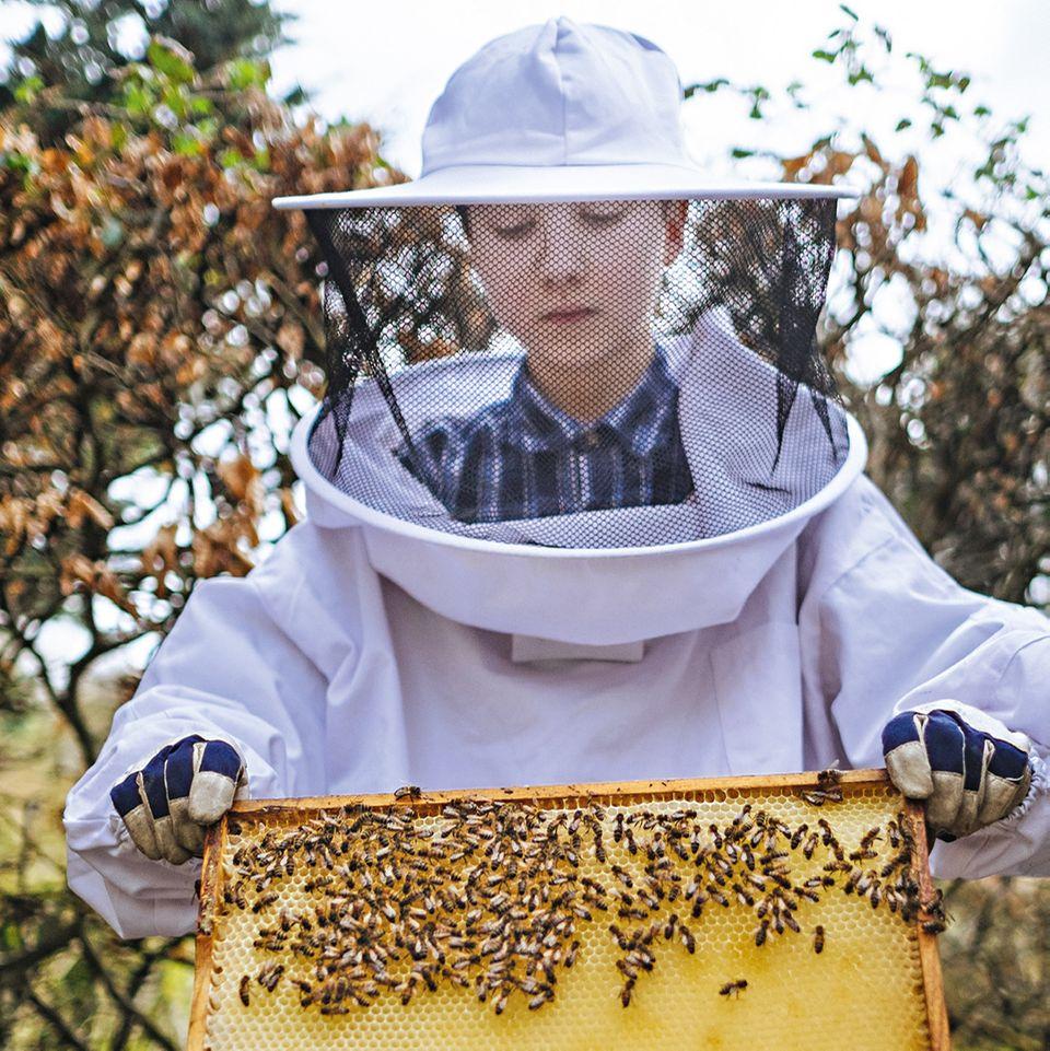 Imker bei der Arbeit mit den Bienen