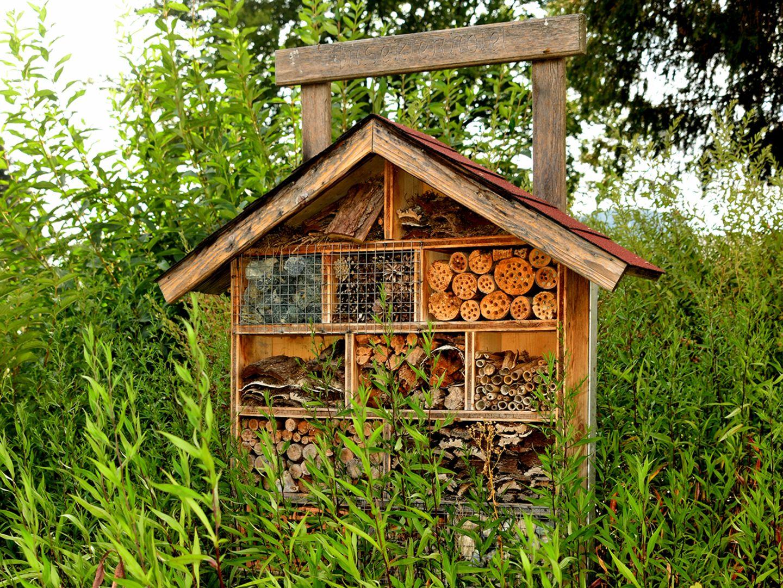 Insektenhotel im Wald