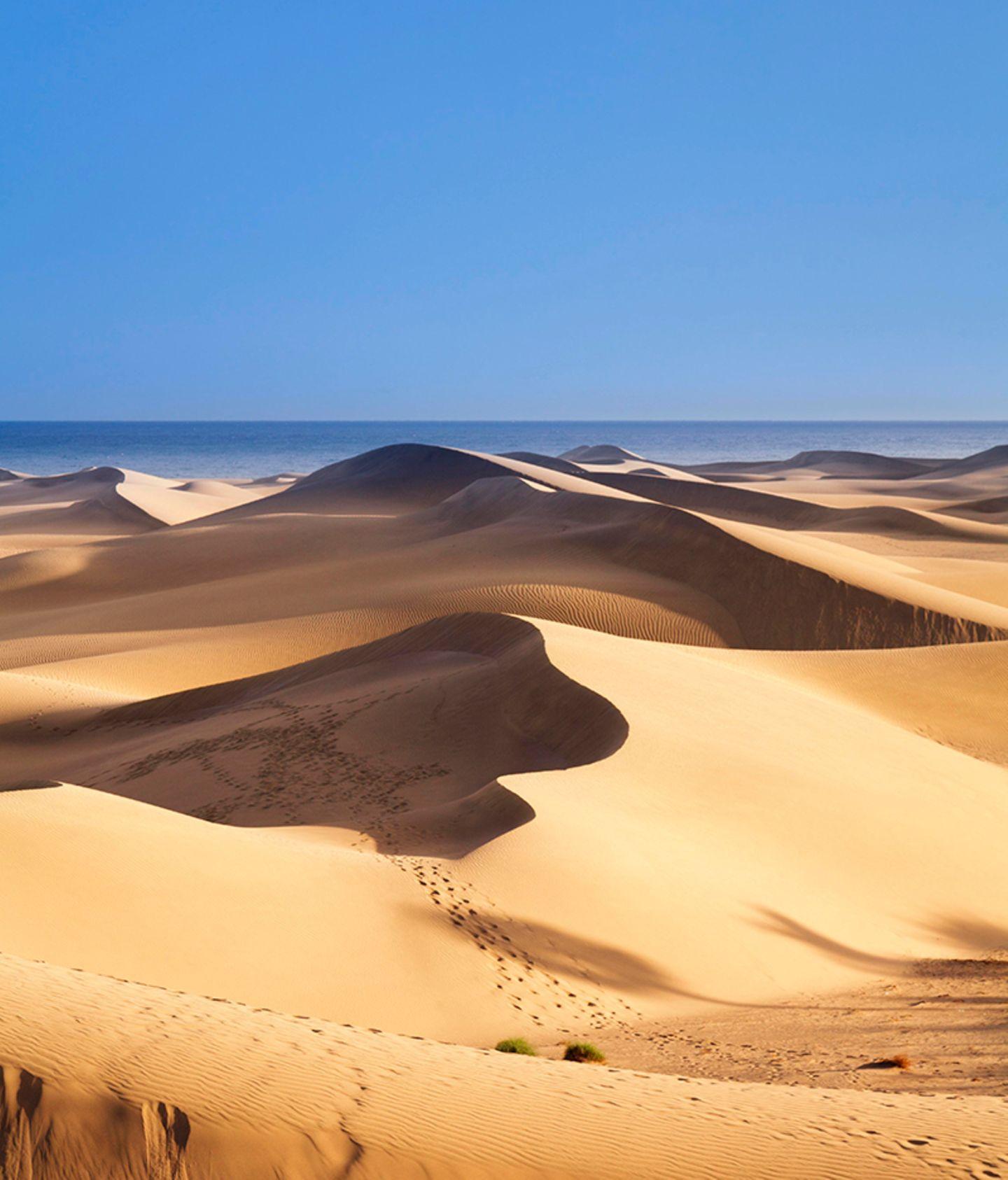 Dünen von Maspalomas, Gran Canaria, Kanarische Inseln, Spanien