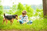 Junge und Hund spielen auf einer Wiese