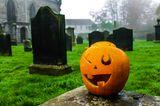 Friedhofsführung zu Halloween in Frankfurt