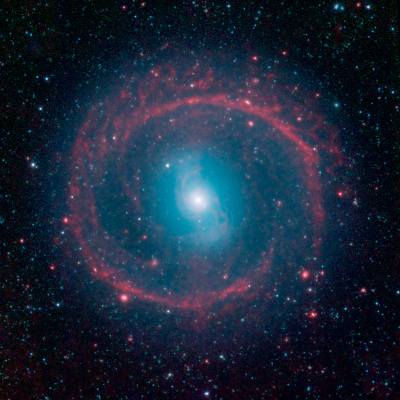 Galaxie NGC 1291