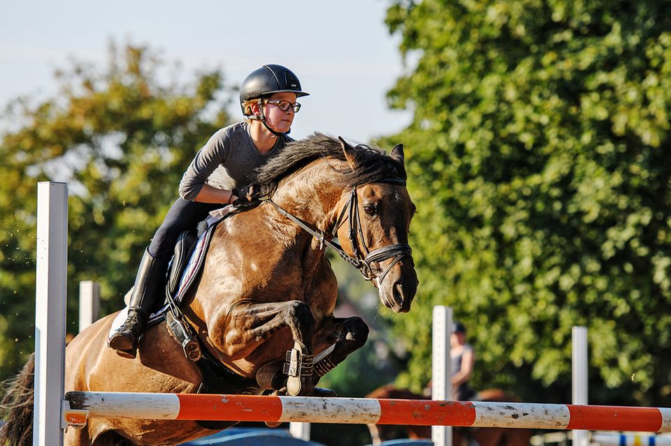 Henry und sein Pferd Selma springen über ein Hindernis