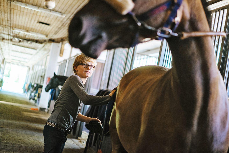 Pferd Selma wird von Henry gestriegelt