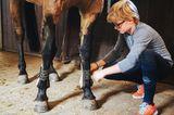 Henry legt seinem Pony die Gamaschen ann