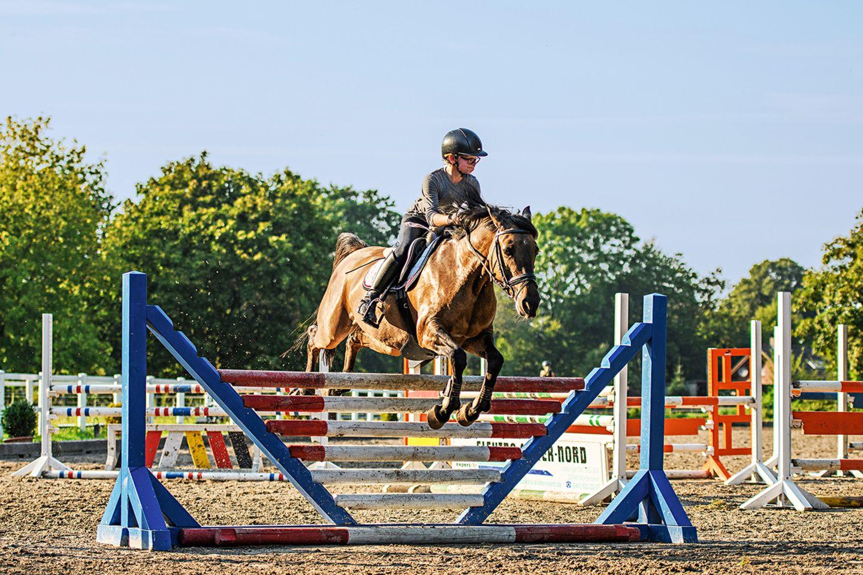 Reiter und Pferd beim Springtraining