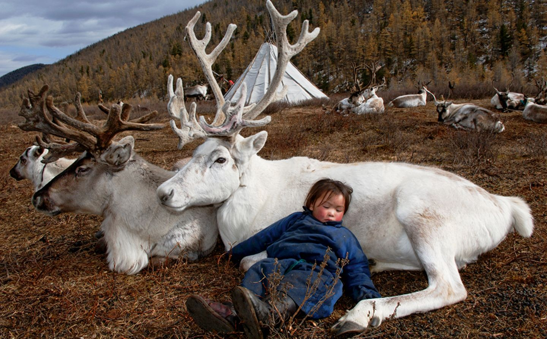 Deer totem, West Taiga, Hovsgol Province,  Mongolia, 2006