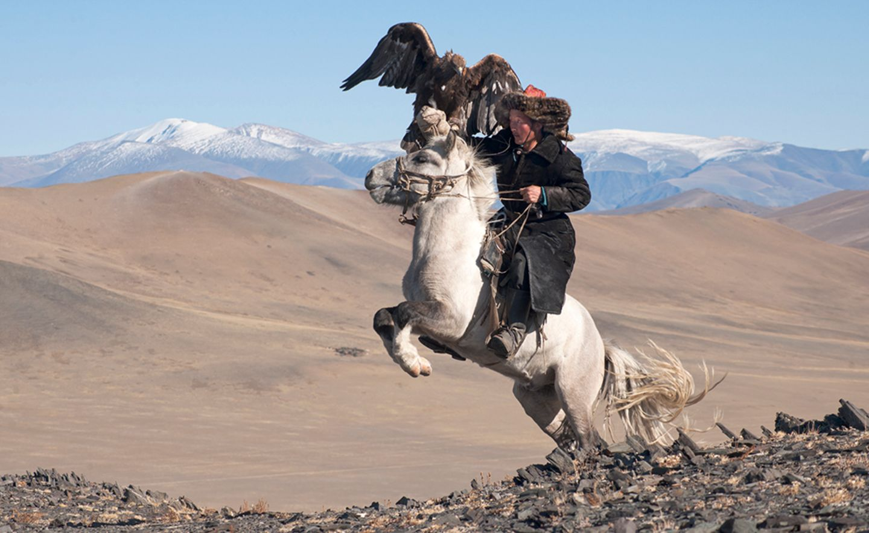 White Pegasus study I, Deloun Highlands, Olgii Province, Mongolia, 2010