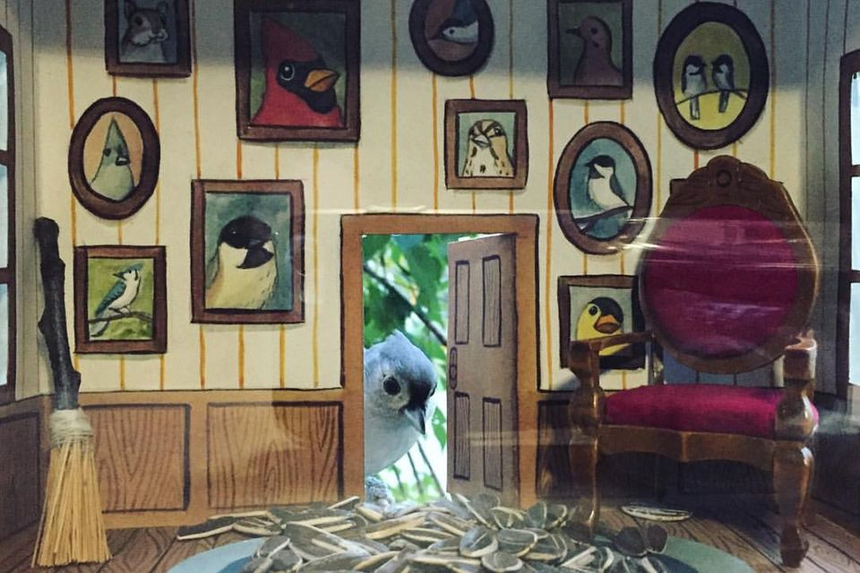 Vogelhaus von Jada Fitch