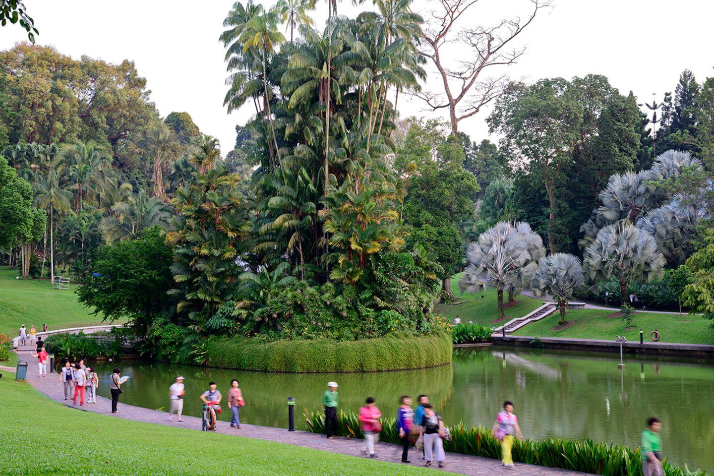 Botanischer Garten, Singapur