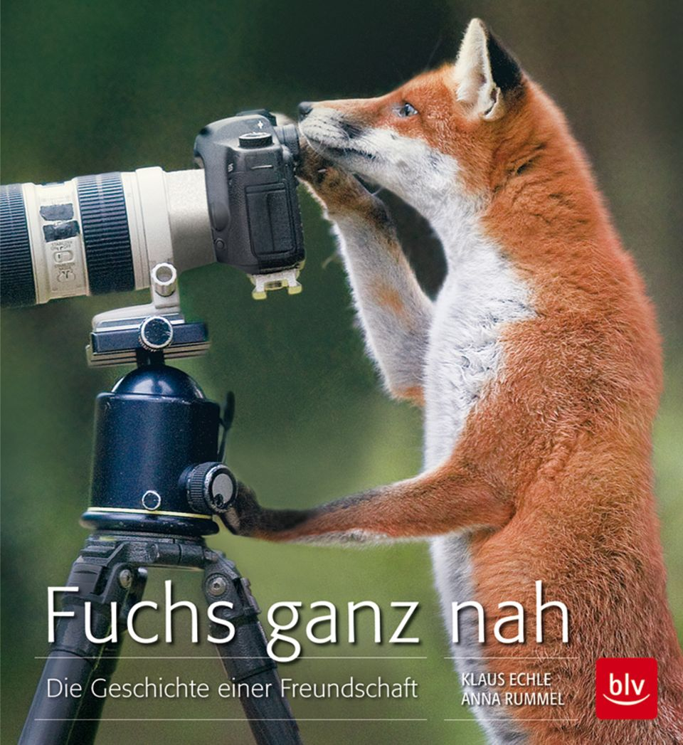 Cover: Fuchs ganz nah - Geschichte einer Freundschaft