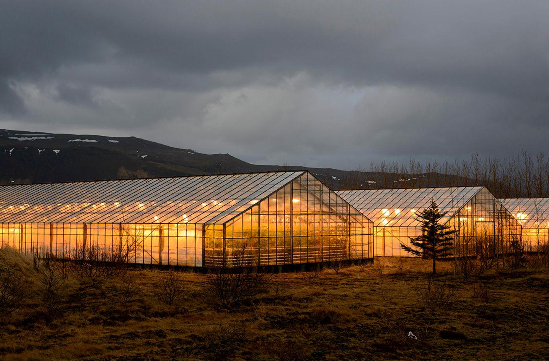 Beleuchtete Gewächshäuser, mit Erdwärme beheizt