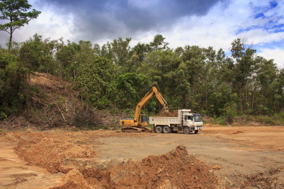Regenwald-Zerstörung für eine neue Palmöl-Planatage