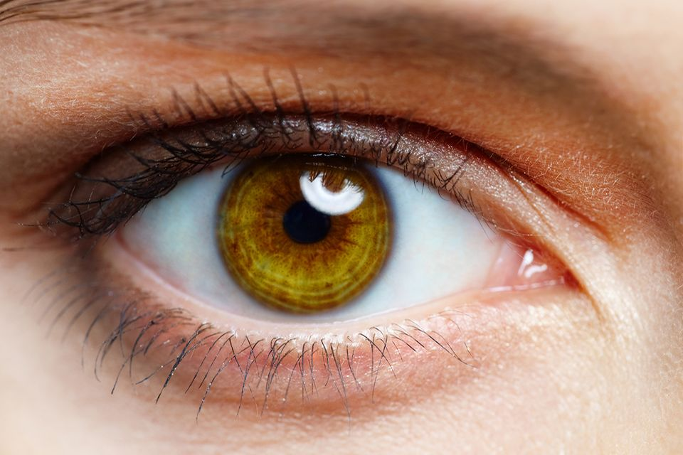 Braunes Auge eines Menschen