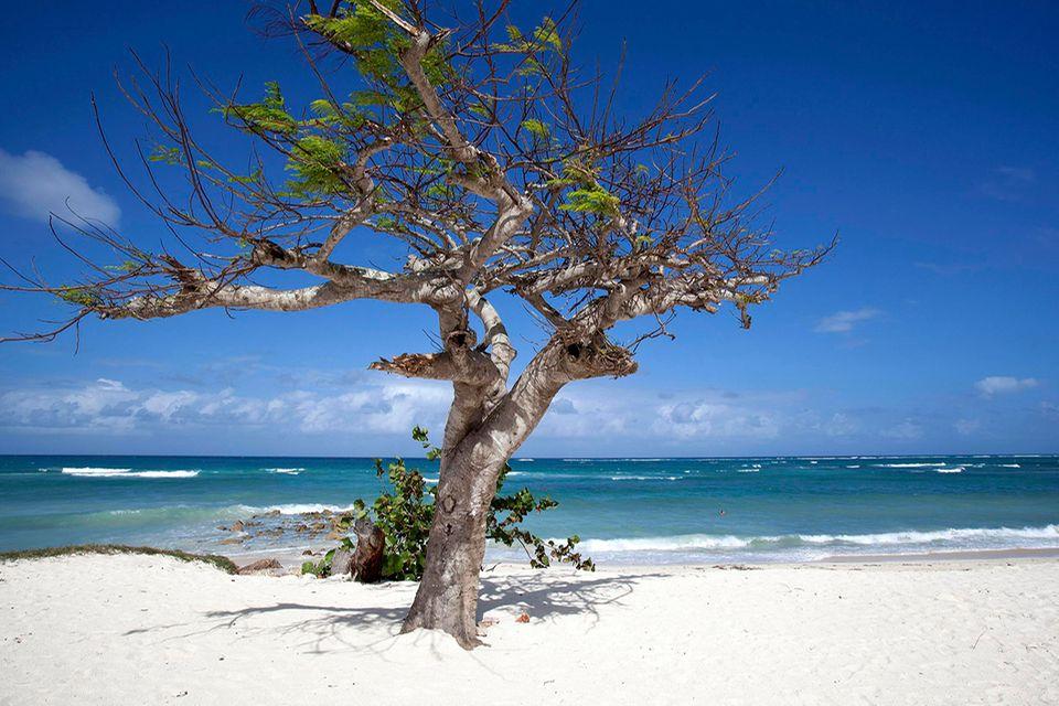 Playa Guardalavaca, Kuba