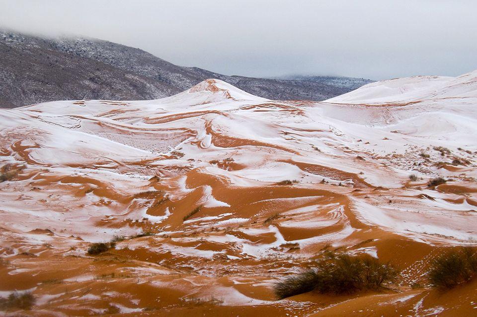 Schneefall in der Sahara