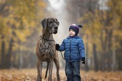 Andy Seliverstoff, Little Kids And Their Big Dogs