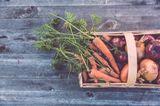 Gemüsekiste