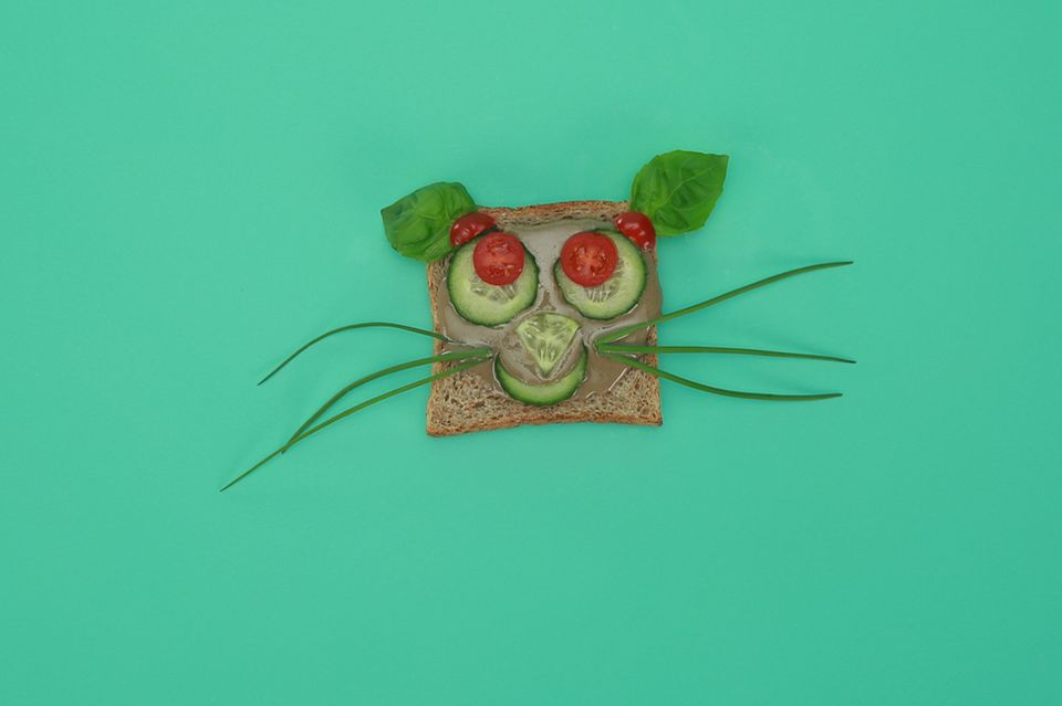 Katzen Gesicht aus Toastbrot