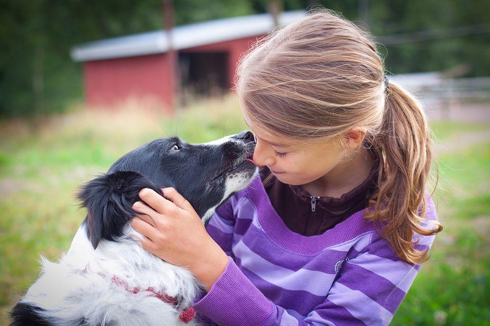 Hund küsst Mädchen