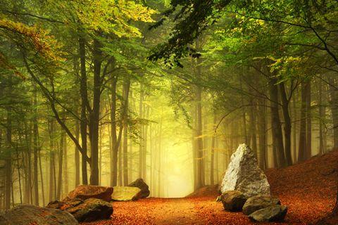 Motive finden: Das Besondere im Alltäglichen entdecken