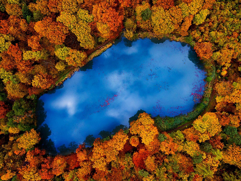 Waldseee im schwäbischen Stromberg