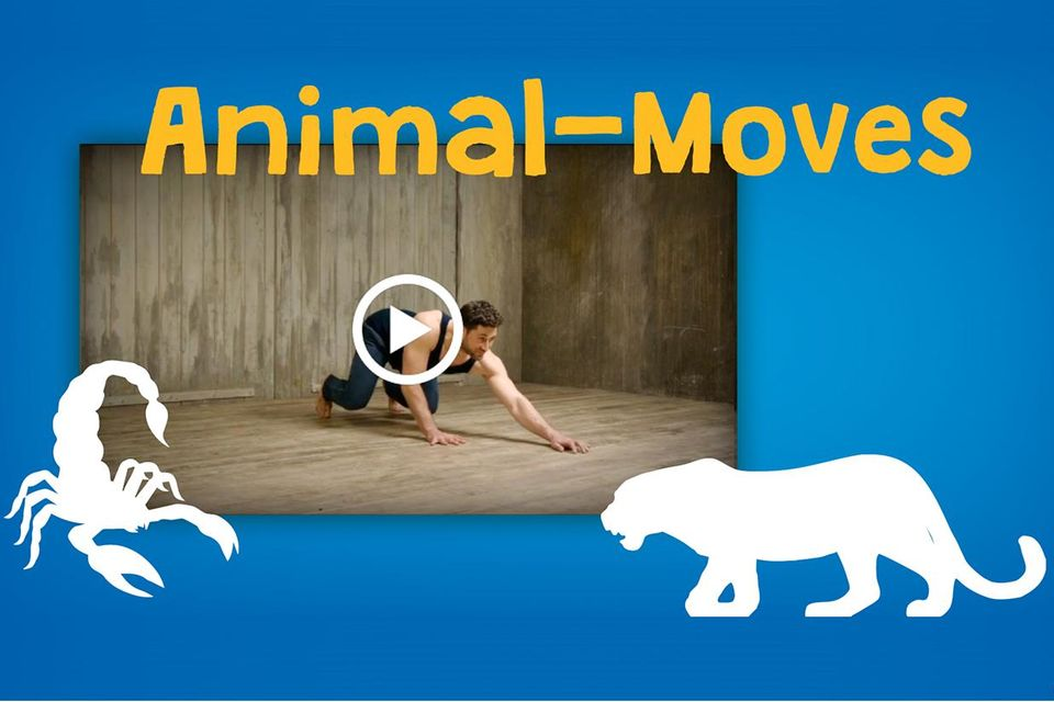 Animal Moves Leopard