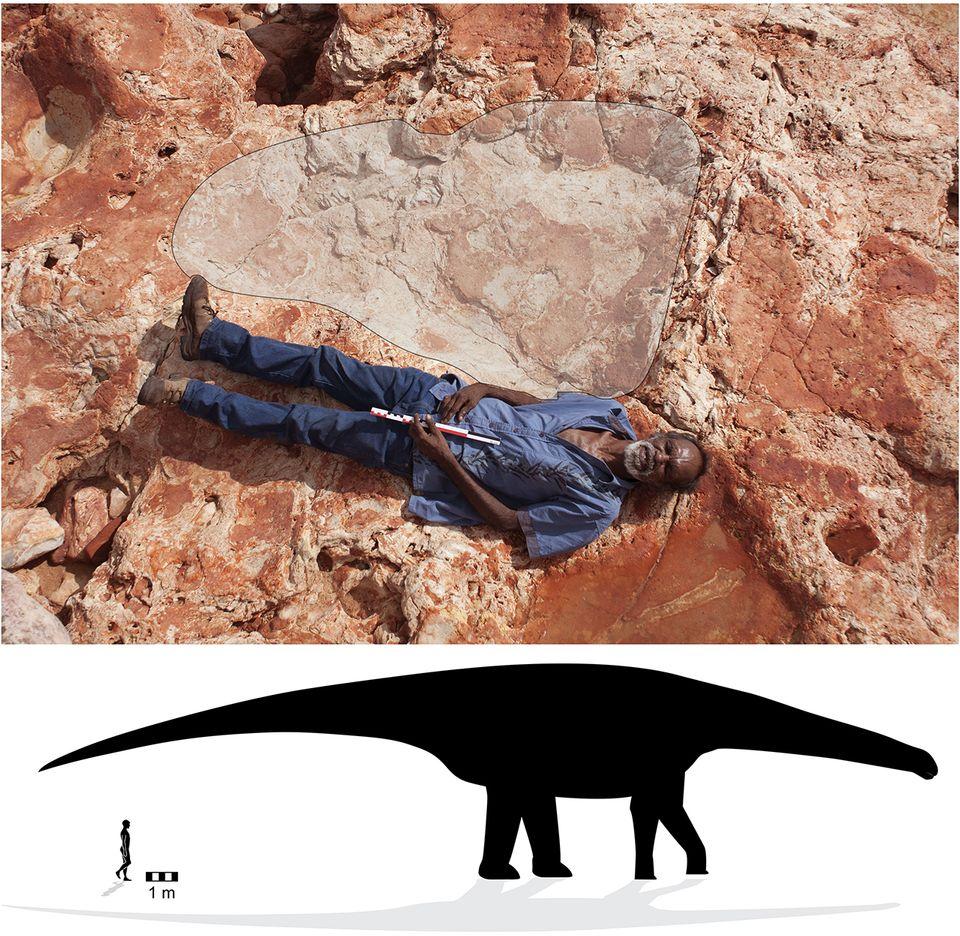 Großenverhältniss, Sauropod-Spur - Mensch