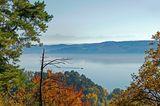 Blick vom Aussichtspunkt Haldenhof über den Bodensee