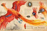 Phönix in Harry Potter und die Kammer des Schreckens