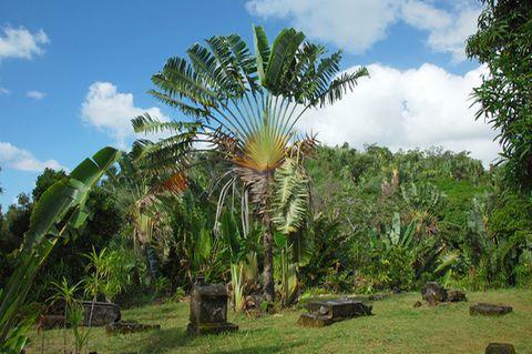 Ile Sainte-Marie, Madagascar