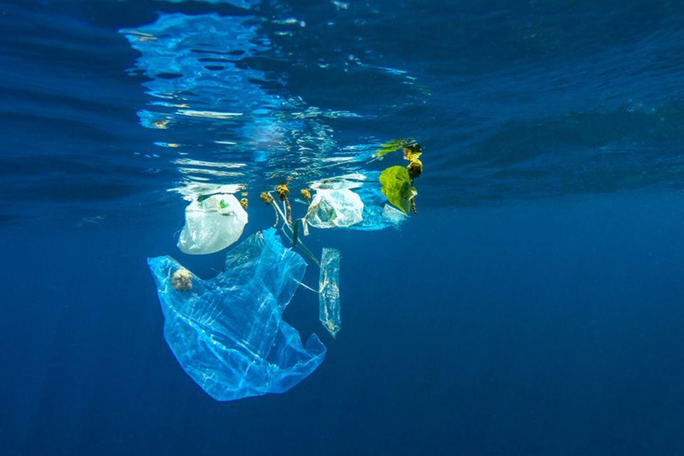 Plastik Müll Meer Ozean