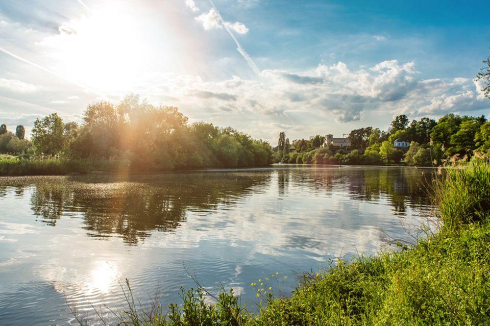 Fluss Wasser Gewässer Umwelschutz