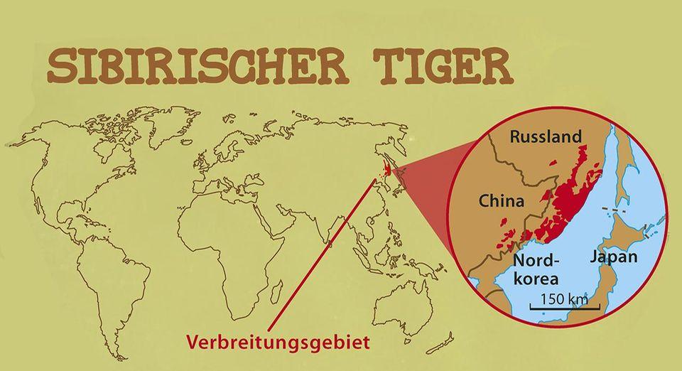 Sibiritischer Tiger Verbreitungsgebiet