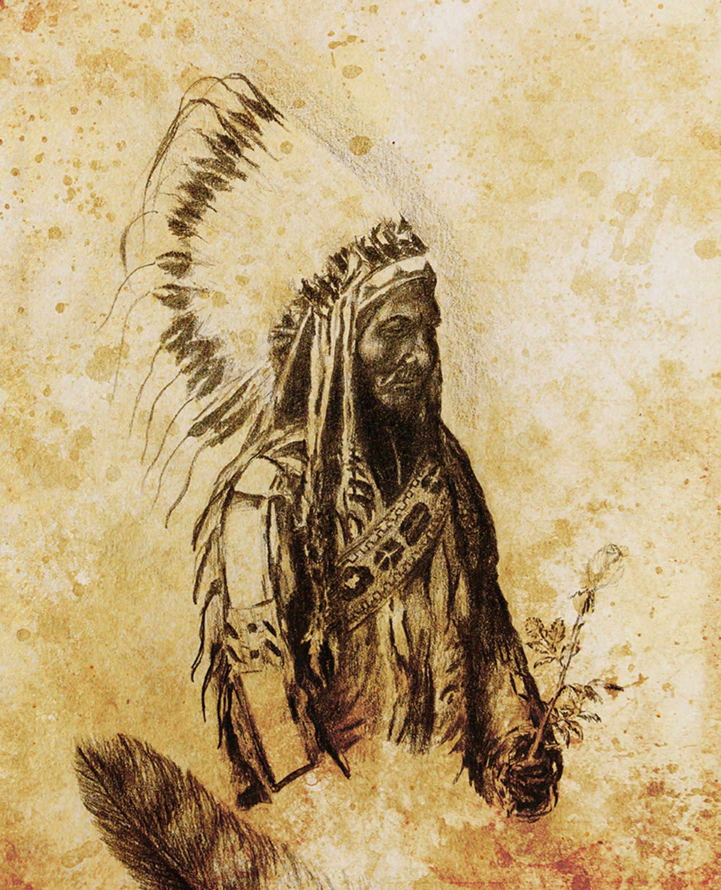 Sitting Bull, Indianer Anführer