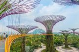 Singapur, Supertrees und Gardens by the Bay