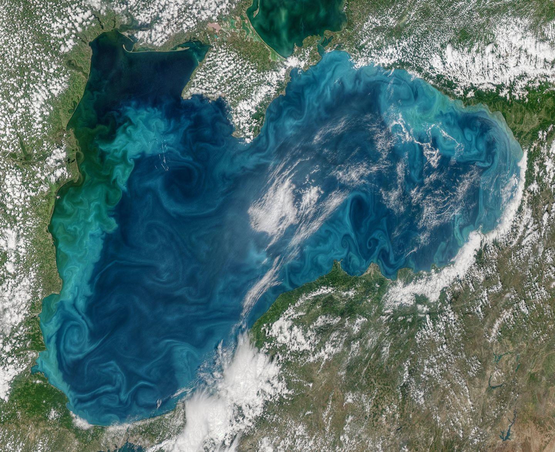 Algenblüte im Schwarzen Meer
