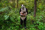 Pandas Gone Wild