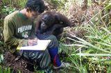 Sri und Agus in der Waldschule