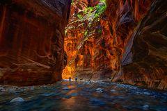 Zion Narrows, USA