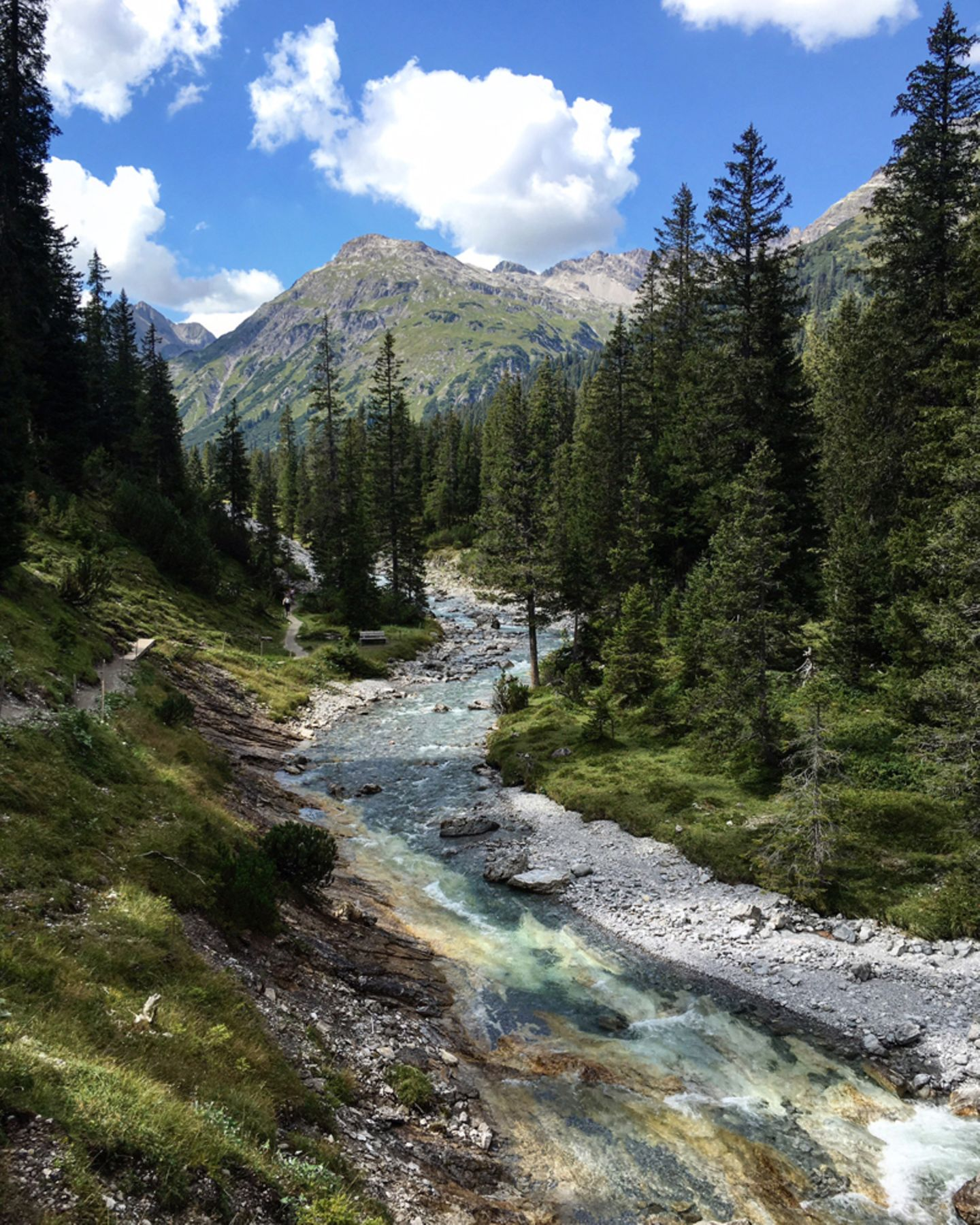 Junger Lech in Österreich
