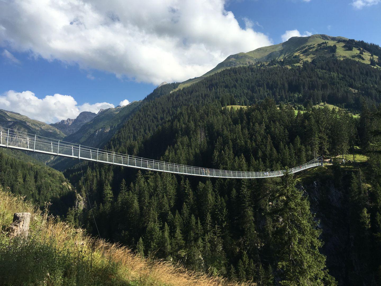 Hängebrücke am Höhenbachtal