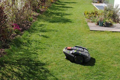 Rasenmähroboter