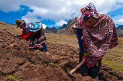 Südamerika, Peru, Cuzco, El Parque de la Papa (Potatoe Park), das Drei-Seen-Tal