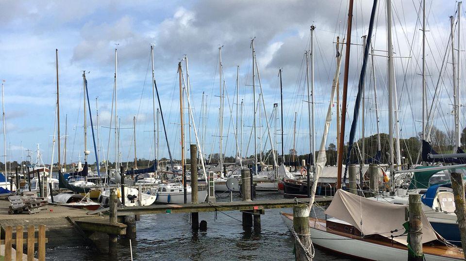 Segelboote auf der Schlei