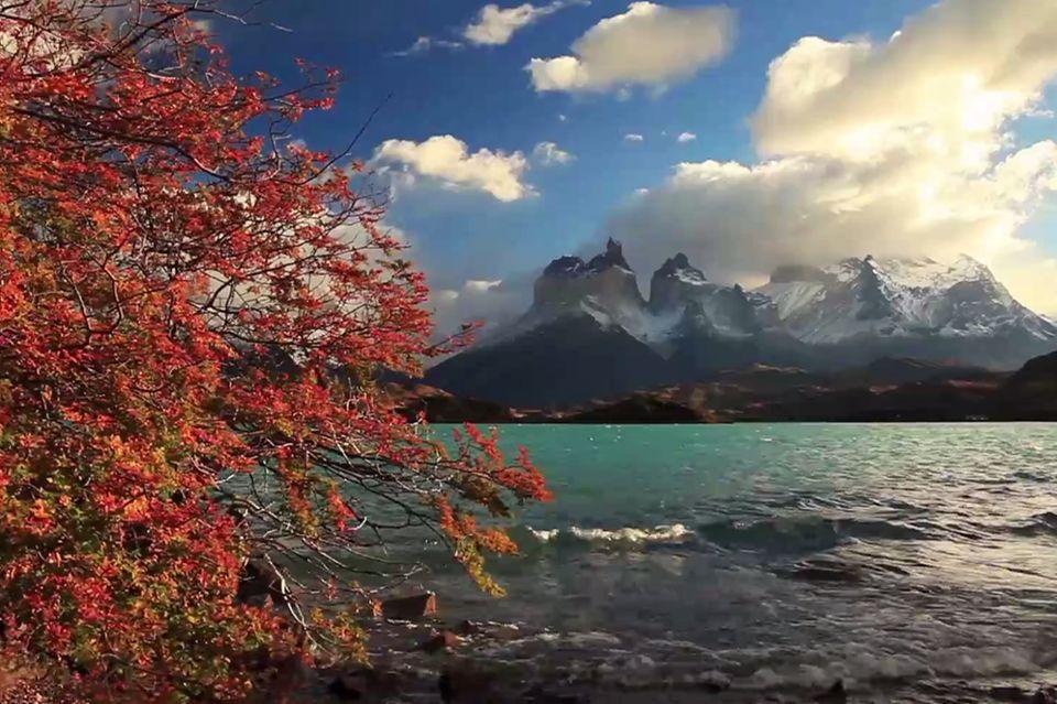 Südamerika Highlights